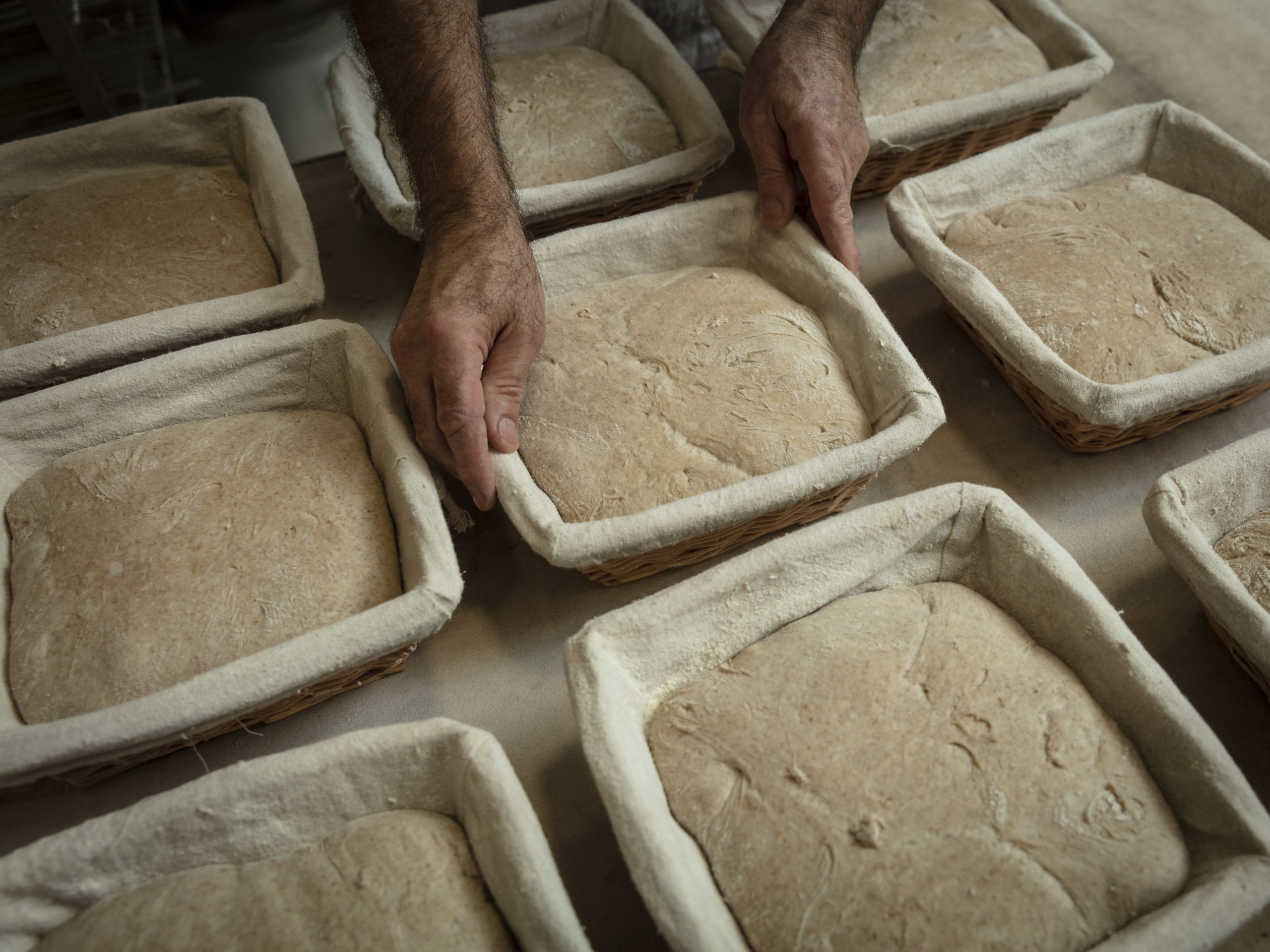 Petit déjeuner au pain salvator